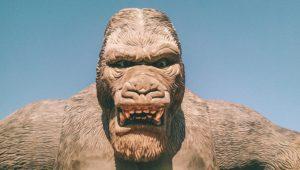 """""""È stata la bella che ha ucciso la bestia"""" (King Kong)"""